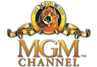 Interlink Network Client MGM Networks, Inc.